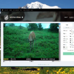 monChoix-2905-crea-wildmb_web.mp3